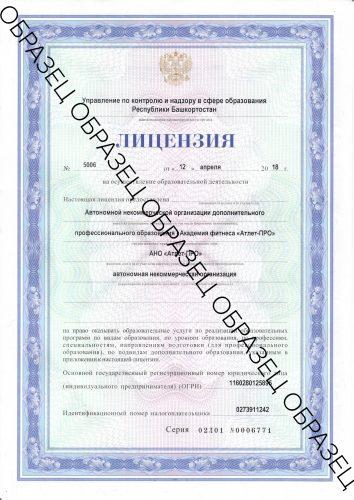 Лицензия образец